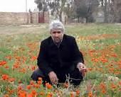 معینیان محمد تقی