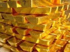 gold moute